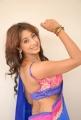 Telugu Actress Sanjana Hot in Low Back Saree Blouse