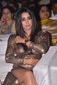 Actress Sanjjanaa Galrani New Photos @ Sobhan Babu Awards 2018