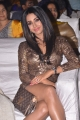 Actress Sanjana New Photos @ Sobhan Babu Awards 2018