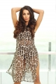 Actress Sanjana Galrani Portfolio Photos