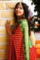 Sanjana Galrani In Saree Diwali Look