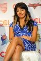 Sanjana Latest Hot Stills @ CCL Press Meet