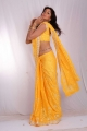 Sanjana Hot Stills in Yellow Saree
