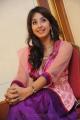 Sanjana Latest Beautiful Photos at Jagan Nirdoshi Press Meet