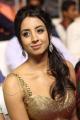 Sanjana Hot Photos @ Sardaar Gabbar Singh Audio Release