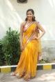Sanjana Singh Hot in Saree Pics