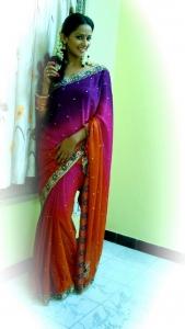 Sanjana Singh in Saree Photo Shoot Gallery