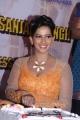 Actress Sanjana Singh 2014 Birthday Celebrations Stills