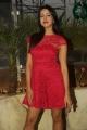 Actress Sanjana Photos @ 31-12 NYE 2016 Curtain Raiser