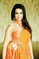 Telugu Actress Sanjana Archana Galrani Latest Photoshoot Stills