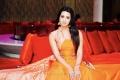 Actress Sanjana Galrani Latest Photoshoot Stills