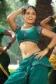 Meimaranthen Movie Actress Sanyathara Hot Stills