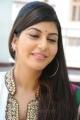 Disco Heroine Sara Sharma Cute Stills