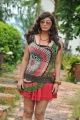Telugu Heroine Sara Sharma Latest Stills