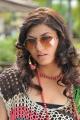 Disco Movie Actress Sara Sharma Latest Pics