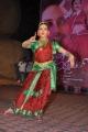 Saradaga Ammayilatho Audio Release Stills
