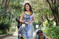 Actress Nisha Agarwal in Saradaga Ammayilatho Movie Stills