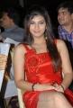 Telugu Actress Sarah Sharma Hot Stills