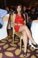 Sarah Sharma Hot Stills