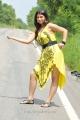 Sarah Sharma Hot Pics in Yellow Frocks