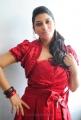 Sarah Sharma Photos Stills