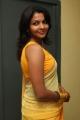 Saranya Nag Hot Photos in Transparent Yellow Saree