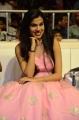 Sardar Gabbar Singh Movie Audio Launch Stills