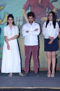Rakul Preet Singh, Allu Arjun, Catherine Tresa @ Sarrainodu Movie Success Meet Stills