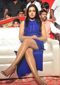 Catherine Tresa @ Sarrainodu Success Celebrations in Vijayawada Photos