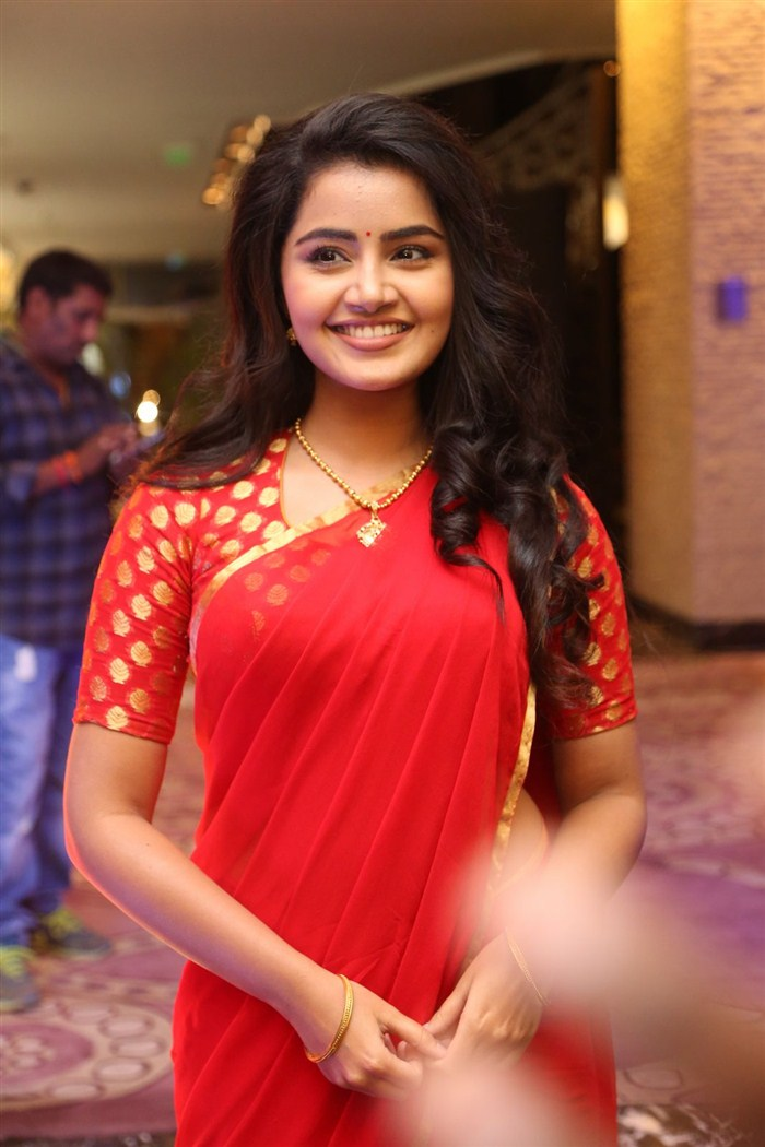Actress Anupama Parameswaran @ Sathamanam Bhavati Success Meet Stills