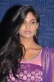 Tamil Actress Twinkle at Sathiram Perundhu Nilaiyam Audio Launch Stills