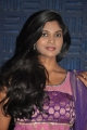 Actress Twinkle at Sathiram Perunthu Nilaiyam Movie Audio Launch Stills
