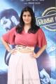 Varalakshmi Sarathkumar @ Sathya Movie Success Meet Photos