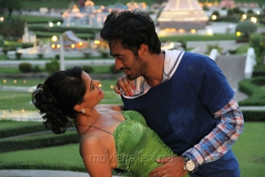 Hot Bindu Madhavi, Thaman Kumar in Sattam Oru Iruttarai Movie Stills