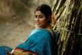 Savarakathi Movie Actress Poorna Stills HD
