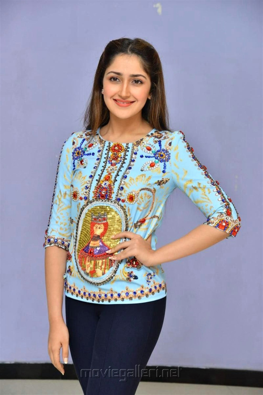 Actress Sayesha Latest Images @ Chinababu Success Meet