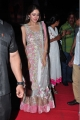 actress_sayesha_saigal_stills_akhil_audio_launch_1f4b98e