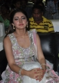 actress_sayesha_saigal_stills_akhil_audio_launch_28d3217