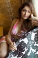 Actress Sayyeshaa Saigal Portfolio Images