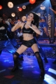 Item dancer Scarlett Wilson Item Song Shoot in Chandi Movie