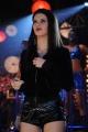 Scarlett Mellish Wilson Chandi Item Song Stills