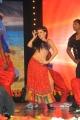 Scarlett Wilson Hot Dance Photos at Genius Movie Audio Launch
