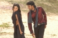 Allari Naresh, Poorna @ Seema Tapakai Movie Stills