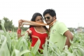 Bhavya Sri , Sandeep in Seethadevi Telugu Movie Pics