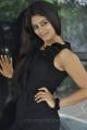 Telugu Actress Seethal Sidge Stills at Donga Prema Movie Launch