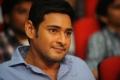 Mahesh Babu at Seethamma Vakitlo Sirimalle Chettu Triple Platinum Photos