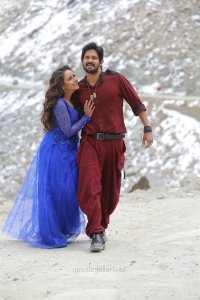 Aanchal Munjal, Nakul in Sei Movie HD Images