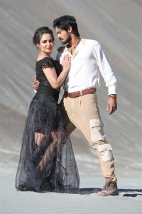 Aanchal Munjal, Nakul in Sei Movie Images HD