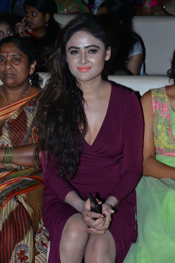 Actress Sony Charishta @ Sekharam Gari Abbayi Audio Launch Photos