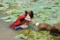 Dilipan, Gauri Nambiar in Sembattai Movie Stills